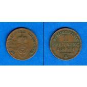Lippe 1 Pfennig 1851 A  ss