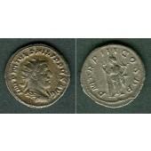 Marcus Julius PHILIPPUS I. Arabs  Antoninian  vz-  [246]