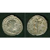 M. Julius Severus PHILIPPUS II. Filius  Antoninian  vz/ss+  selten  [246-248]